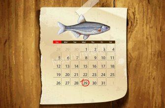 Календарь клёва Быстрянки