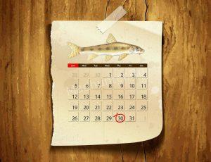 Календарь клёва Пескаря
