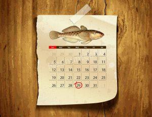 Календарь клёва Бычков