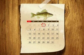 Календарь клёва Ерша