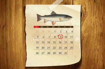 Календарь клёва Гольца