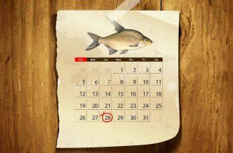 Календарь клёва Подлещика