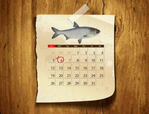 Календарь клёва Толстолобика