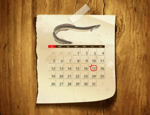 Календарь клёва Угоря