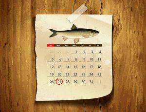 Календарь клёва Вырезуба