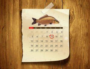 Календарь клёва карпа
