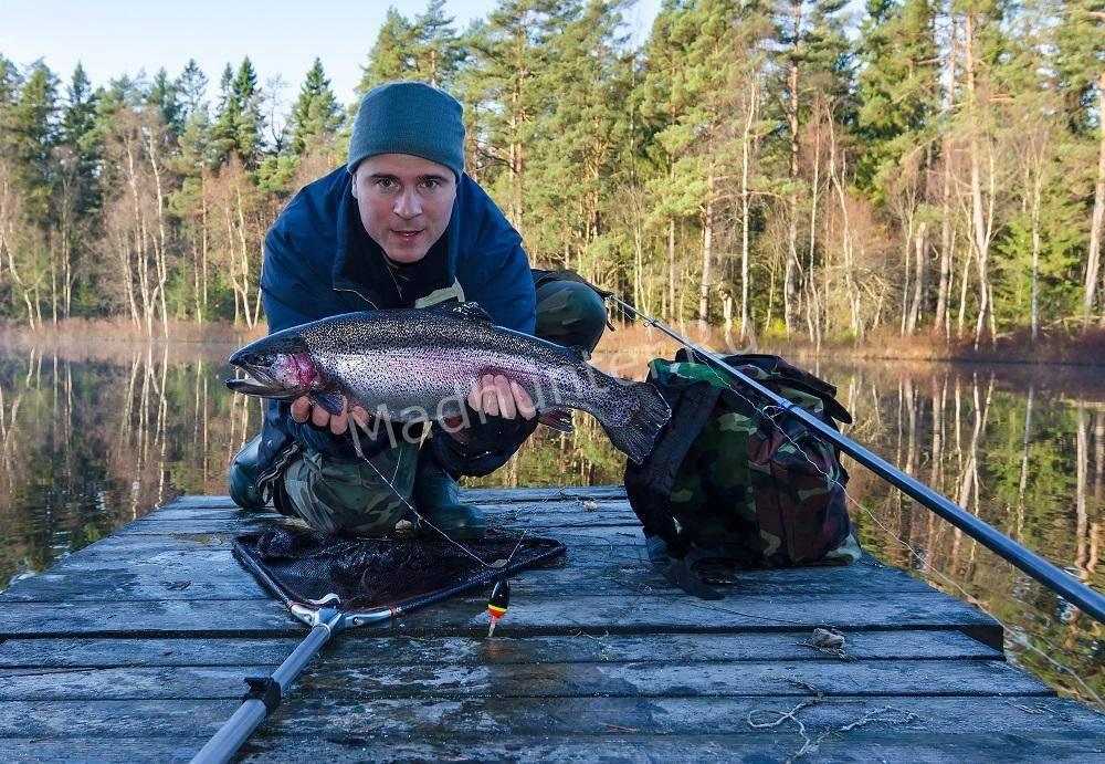 Рыбак с осенним форелевым трофеем