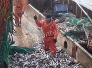Экологическая ответственность – рыбаки в Охотском море