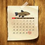 Календарь клева рыбы линь