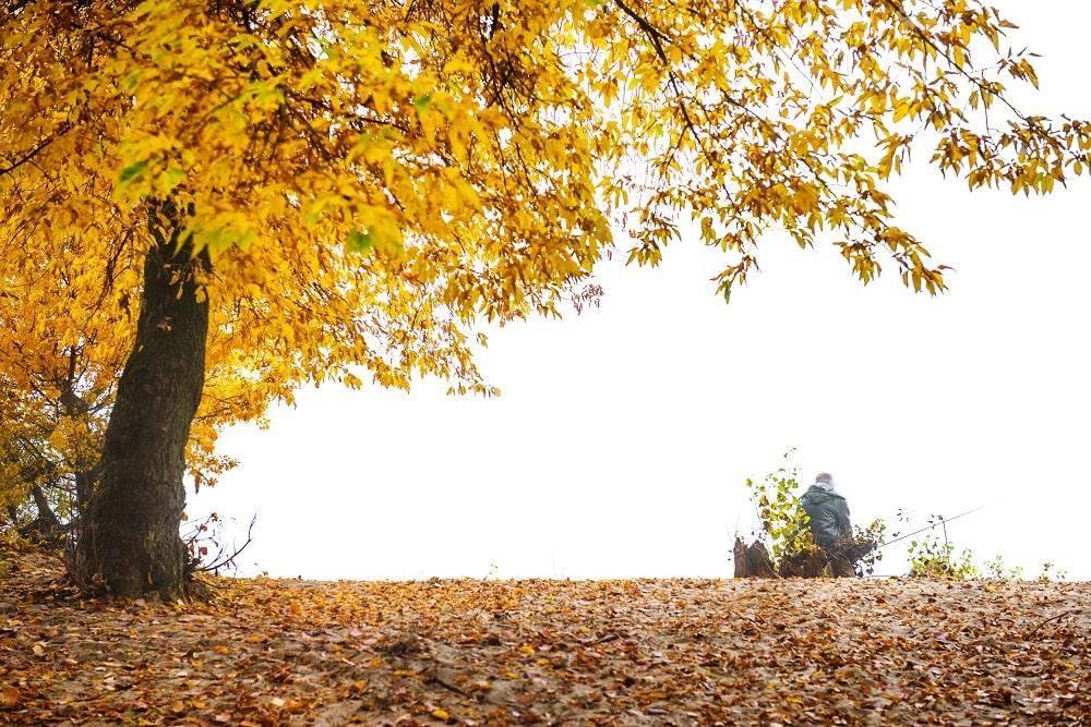 Ловля плотвы в октябре