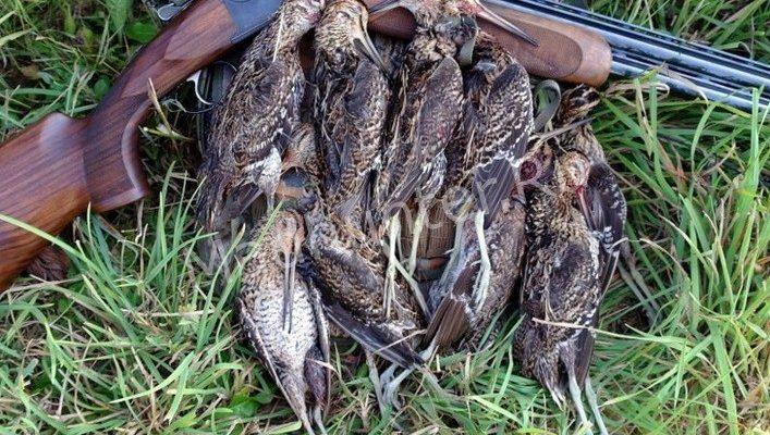 Разрешения на охоту – в Астраханской области начинается выдача лицензий