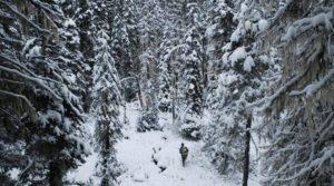 охотник в лесу-min