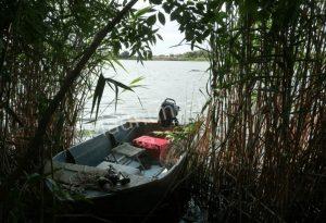 otets-i-doch-utonuli-v-reke-SHeksana-min