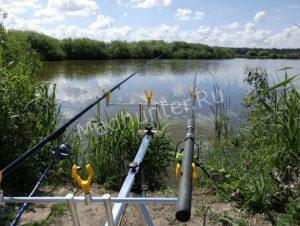 Про любительское рыболовство: принять закон или отставить пылиться на полке.