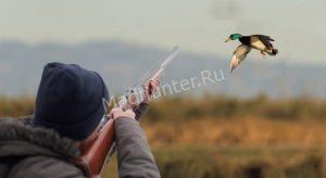 tragediya-krasnobrodnenskogo-lesa-min