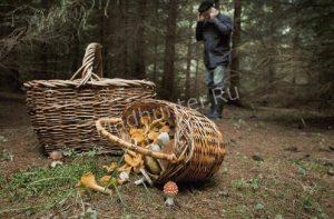 В лесах Уфы заблудилась семья с несовершеннолетним ребенком