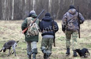 Пензенским нарушителям охоты грозят штрафы