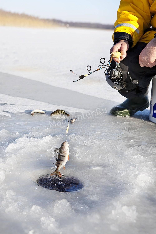 Рыбалка зимой в феврале