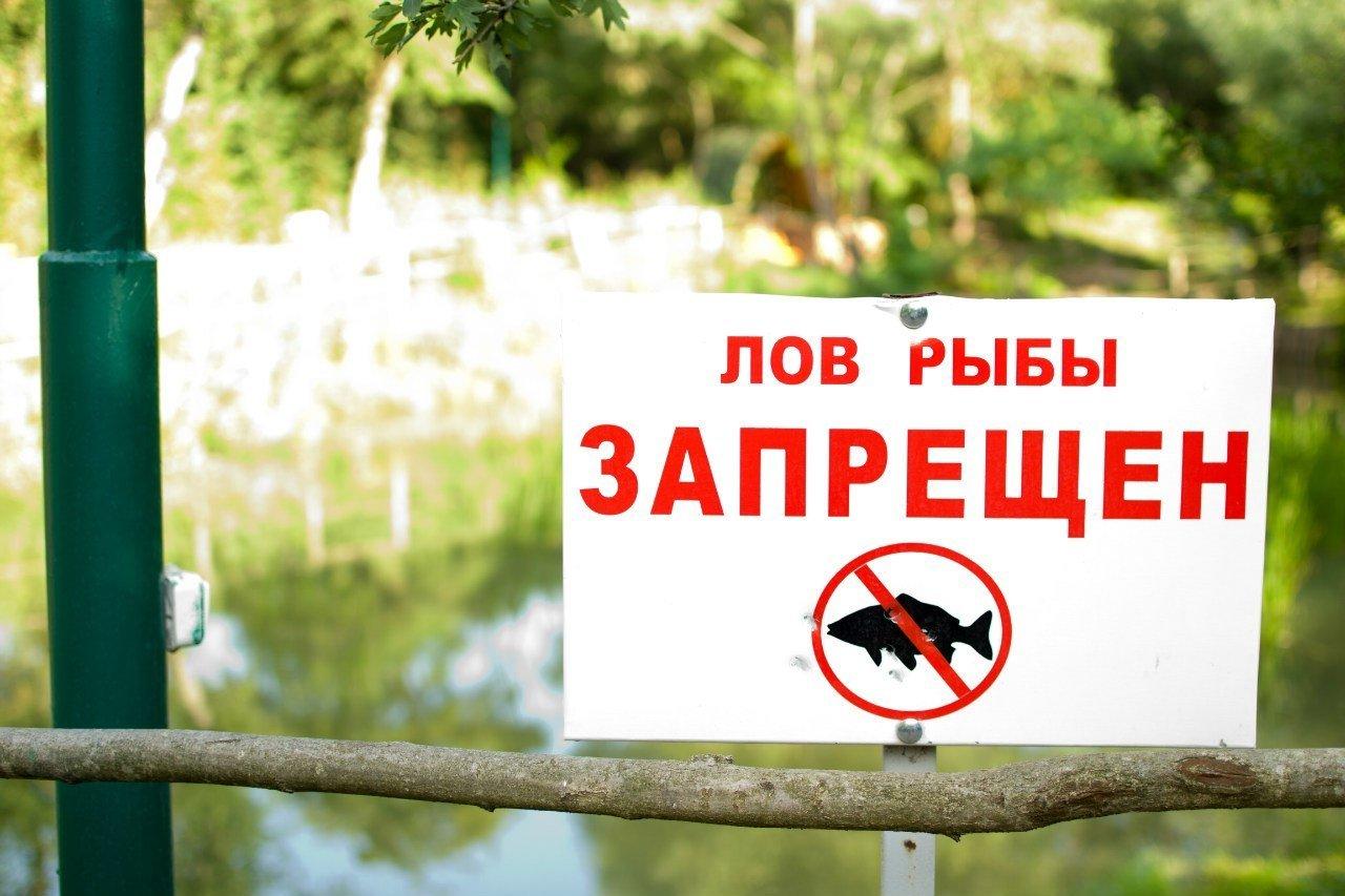 В Коми запретили рыбачить на многих водоемах