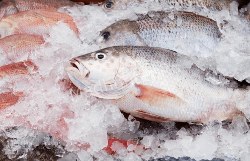 В нижнем Новгороде упала цена на замороженную рыбу