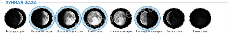 Прогноз клёва и лунные фазы