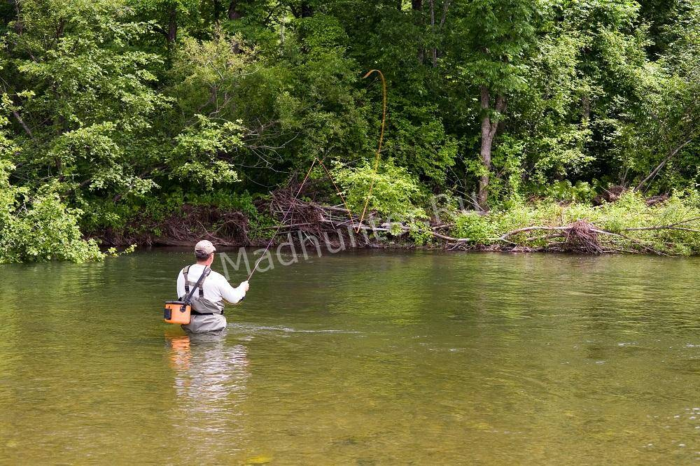 Рыболовство нахлыстом