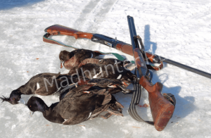 Статистика сначала сезоны охоты на Урале показала, как минимум, пять несчастных случаев-min