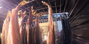 вялим рыбу-min