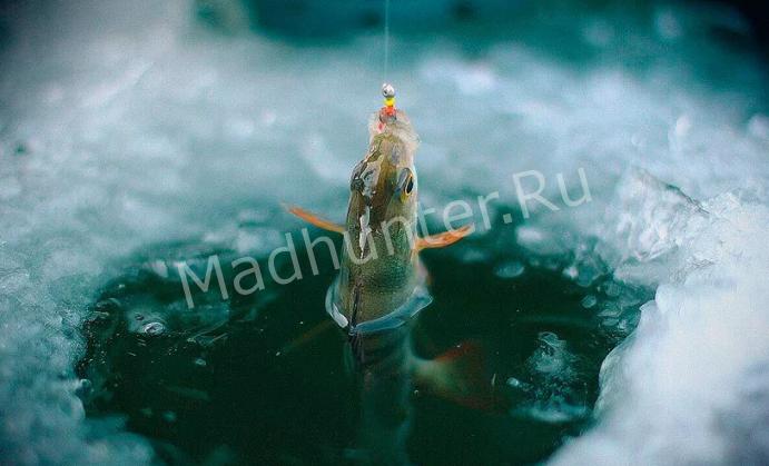 Как вести себя на зимней рыбалке, чтобы получить удовольствие
