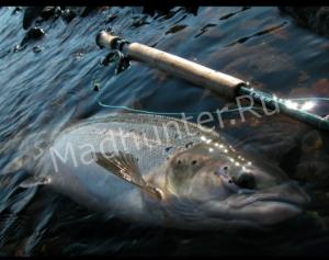 Мурманскому рыбаку придется заплатить за рыбалку