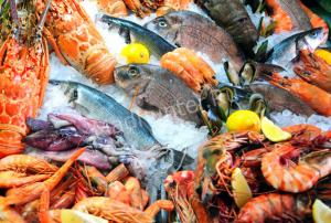 Роспотребнадзор признал непригодной 21 партию рыбо и морепродуктов