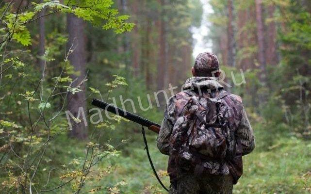 Стражи порядка только за один день задерживают более трех сот браконьеров по всей стране
