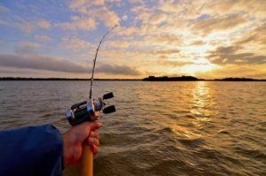 В Государственной думе считают, что нововведения в законе о рыбалке пойдут только на пользу