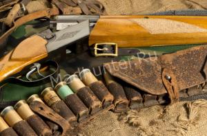 2019 обещает изменения в законе об «оружии»