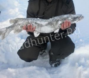 Фестиваль рыбаков «Мормышка» оказался трофейным