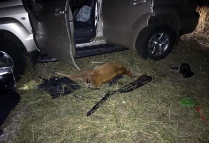 Совпадение ли? Сначала охотник убил животное, а потом погиб и его друг