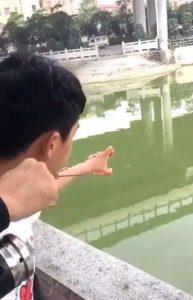 Рука, как новая удочка: молодой человек придумал, как порыбачить, когда с собой нет снасти Молодой человек придумал новый незаурядный способ рыбалки. Причем, используя это способ, вам совершенно не придется брать с собой весь рыболовный арсенал. Достаточно крючка, катушки и собственной руки. Рыбак снял процесс рыбалки с помощью руки – удочки на видео и уже запустил свою идею на просторы Интернета. Молодой человек вооружился прочной резинкой. Расположил резинку на своих пальцах, словно рогатку. Поместил в резинку крючок. Резинку с крючком хорошо оттянул, прицелился, отпустил. И вот, уже сразу он крутит катушку, которую он разместил на другой руке с уловом. Чудо, а не лайфхак для рыбака!