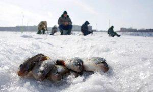 Рыбак из Приморья пропал бесследно