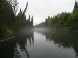 В скором времени на реке Вымь будет запрещено рыбачить