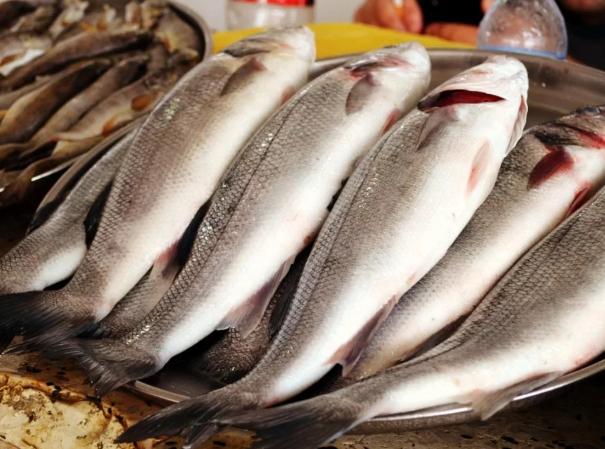 Из Курганска вернули вагон на его родину, который поставлял рыбу