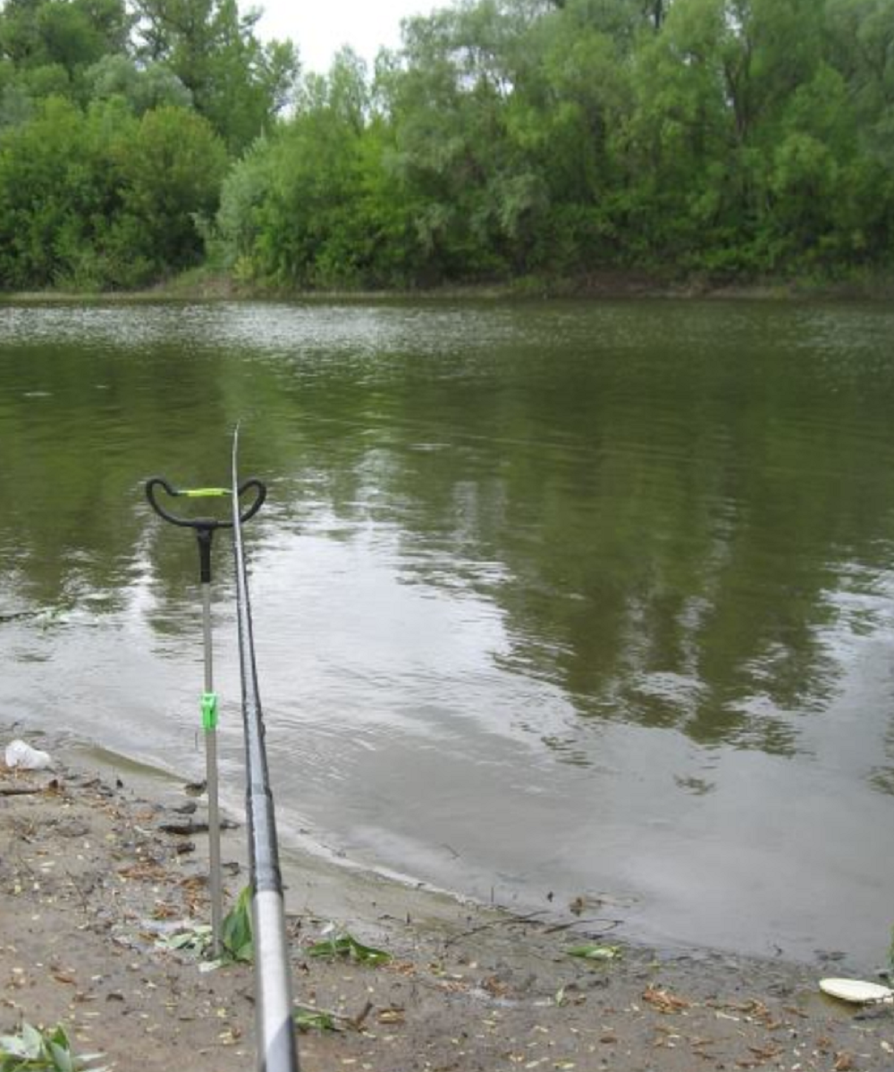 Ловля густеры весной - рыбалка в мае