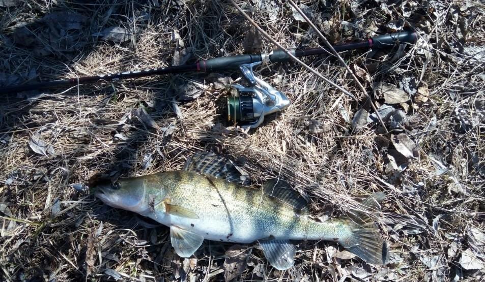 Настоящий рыбак упорно ждет свою рыбу