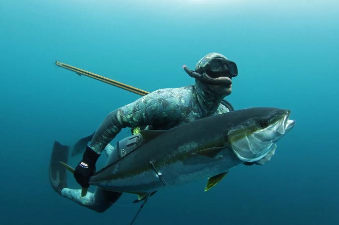 Сняты некоторые ограничения, касающиеся черноморской рыбалки