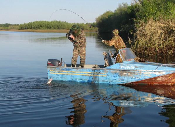 Сюрприз от астраханских вод – редкая рыба