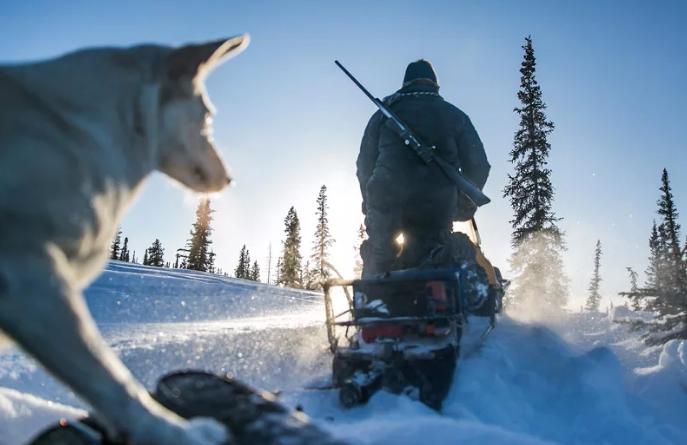 Вступит ли в силу закон о запрете охоты на снегоходах