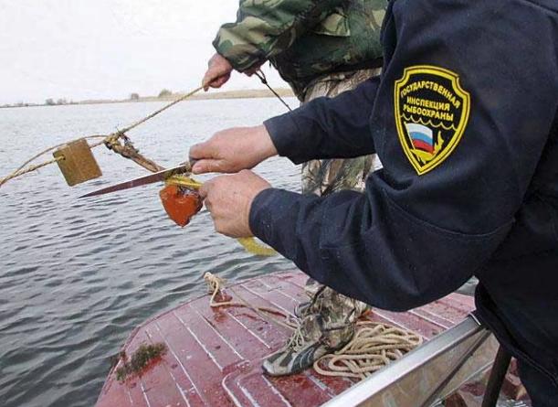 Браконьерам Краснодарского края удалось добыть более 18 тонн рыбы