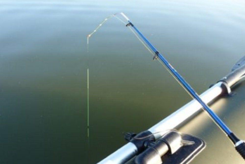Рыбалка на берша в отвес