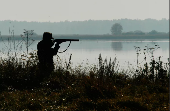 Самарская губерния под запретом для охоты