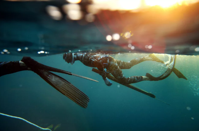 Тверской воришка решил украсть у рыбака ружье для охоты под водой