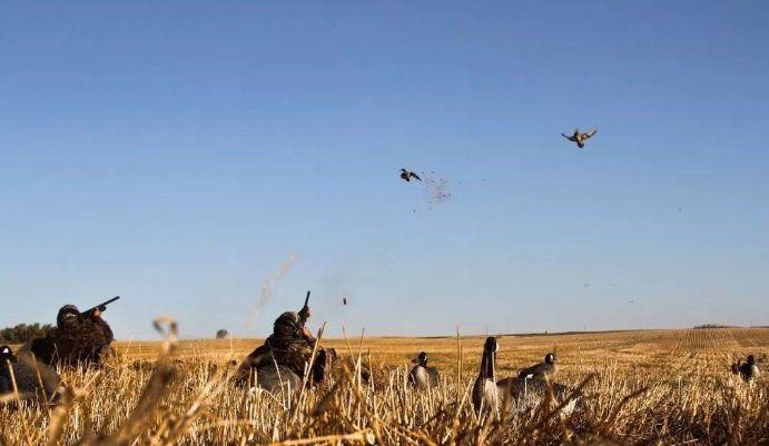 В Челябинске решается вопрос о недопустимости весенней охоты